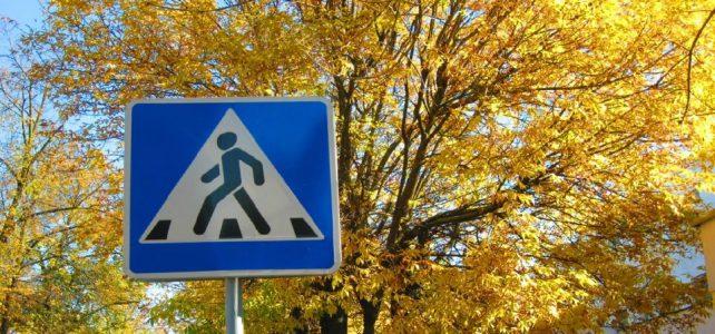 Правила дорожного движения для учащихся осенью